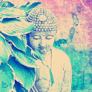 Buddha-Garden_Nashville-_Cut